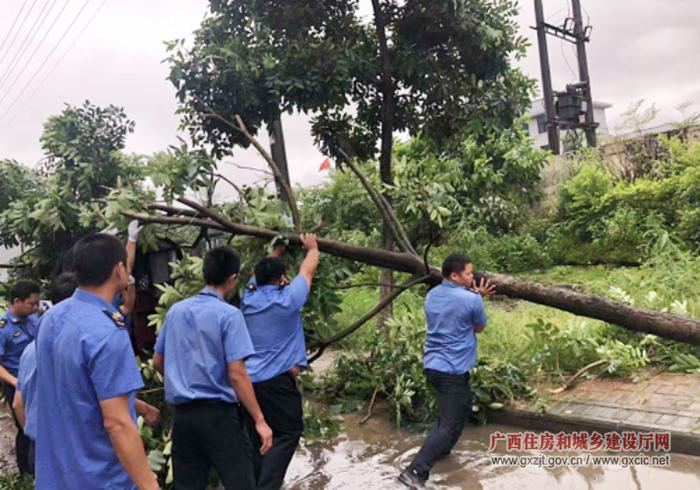 防城港市城市管理监督局全面部署众志一心抗台风